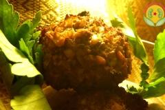 falafel-haricot-vivant-(2)