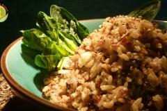 quinoa-riz-haricot-vivant