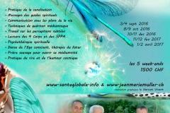 creation graphique le haricot vivant (17)