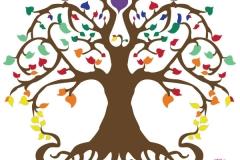 creation graphique le haricot vivant (6-1)