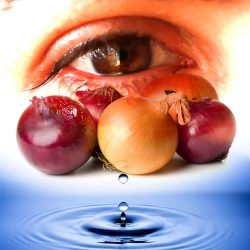 La beauté des larmes et l'esprit des oignons
