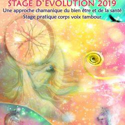 Les stages d'évolution 2019 du Haricot Vivant